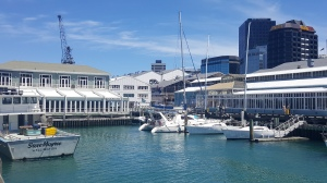 Conference Venue - Shed 6, Wellington's Waterfront (Building at the centre with #6)